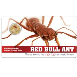 2014 $1 Bright Bugs Series - Red Bull Ant Unc Coin in Card